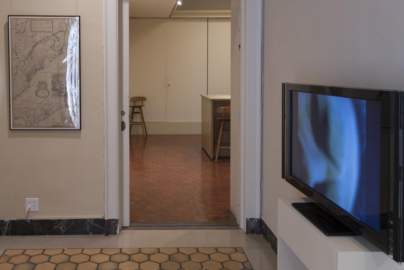 From Cindy Bernard, Vinland, Fralin Museum at the University of Virginia, 2014