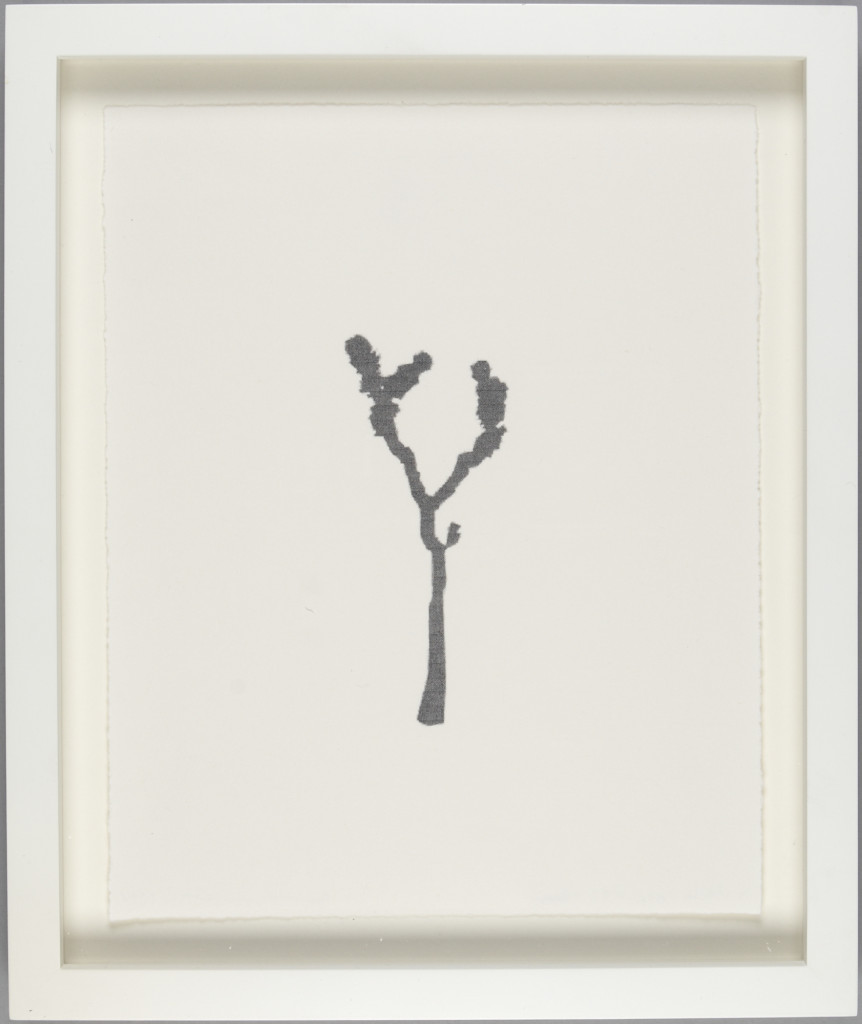 CIndy Bernard, Joshua Tree #33 (Gray), 1994