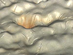 Cindy Bernard, Topography: Oregon Moss Agate #3 (Detail 1). 1995