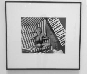 Christopher WIlliams, TecTake Luxus Strandkorb grau/weiß