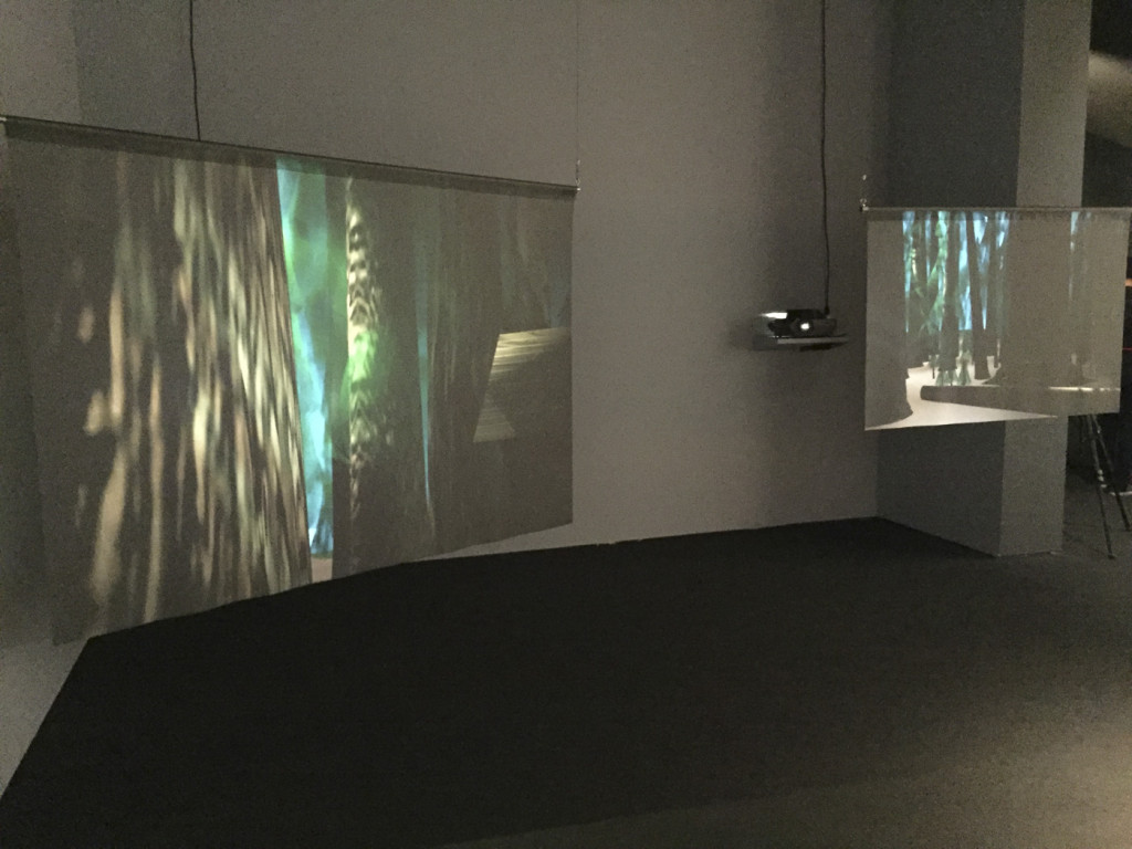 Location Proposal #2, Installation view, Walkers, Museum of the Moving Image, November 2015, 35mm slide projection, filmscreen 200