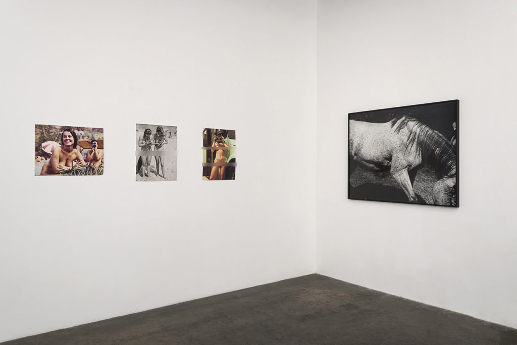 Install view (censored), In the Cut, Gallery Luisotti, August 2016 (Left: Cindy Bernard, Right Whitney Hubbs)