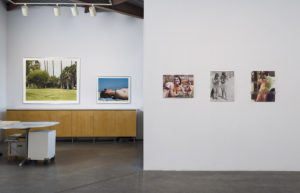Install view, In the Cut, Gallery Luisotti, August 2016, Cindy Bernard